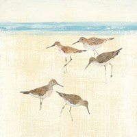 Sandpipers Square II Blue Fine Art Print