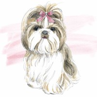 Glamour Pups VIII Framed Print