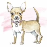Glamour Pups VII Fine Art Print