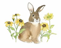 Wildflower Bunnies III Framed Print
