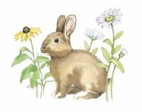 Wildflower Bunnies II Framed Print