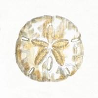 Golden Treasures VII on White Fine Art Print