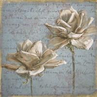 Seed Pod II no Stamp Fine Art Print