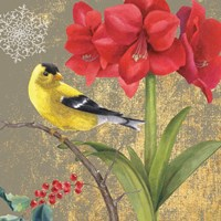 Winter Birds Goldfinch Collage Fine Art Print