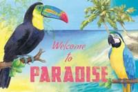Island Time Toucan Fine Art Print