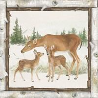 Family Cabin II Fine Art Print