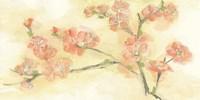 Tinted Blossoms II Fine Art Print