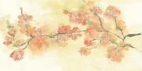 Tinted Blossoms I Fine Art Print