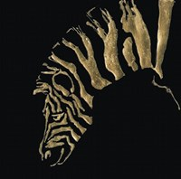 Gilded Zebra on Black Fine Art Print
