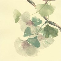 Gingko Leaves II Fine Art Print