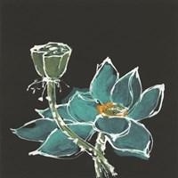 Lotus on Black I Fine Art Print