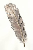 Gold Feathers V Fine Art Print