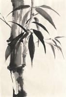 Sumi Bamboo Cream Fine Art Print