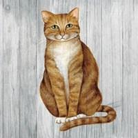 Country Kitty II on Wood Fine Art Print