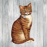 Country Kitty IV on Wood Fine Art Print