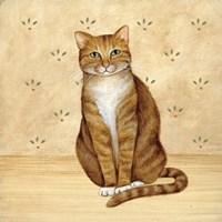 Country Kitty II Fine Art Print