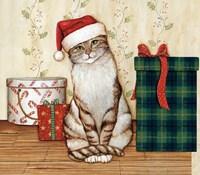 Christmas Kitty  III Framed Print