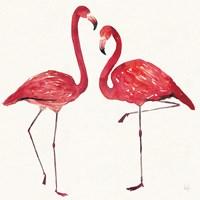Tropical Fun Bird IV Fine Art Print