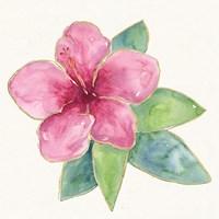 Tropical Fun Flowers III Fine Art Print
