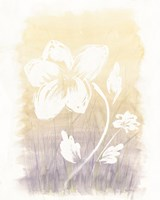 Floral Silhouette II Fine Art Print