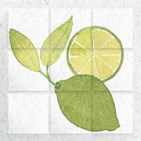 Citrus Tile VII Fine Art Print