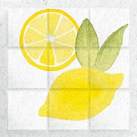 Citrus Tile VI Fine Art Print
