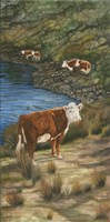 Cattle by the River Fine Art Print