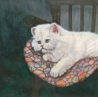 Kitten on Chair Fine Art Print