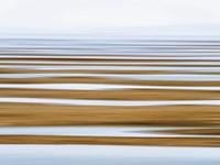 Sand Flats in Fog Fine Art Print