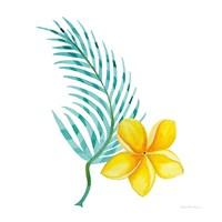 Treasures of the Tropics IX Fine Art Print