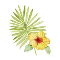 Treasures of the Tropics XI Fine Art Print