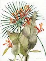 Botanical Flame Lilies Fine Art Print