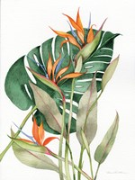 Botanical Birds of Paradise Fine Art Print