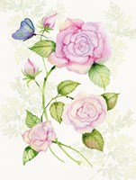 Floral Delight IV Butterflies Fine Art Print