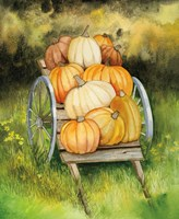 Pumpkin Harvest Fine Art Print