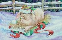 Christmas Pig Fine Art Print