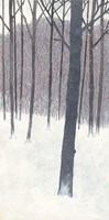 Winters End Fine Art Print