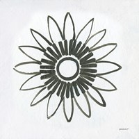 Patterns of the Amazon Icon X Fine Art Print