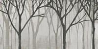 Spring Trees Greystone IV Fine Art Print