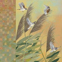 Sparrows and Phragmates August Evening Fine Art Print