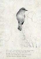 Bird is Sweet Fine Art Print