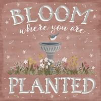 Blooming Garden VII Fine Art Print