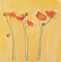 Cadmium Orange Poppies Fine Art Print
