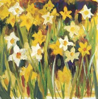 The Color of Spring Fine Art Print