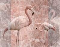 Pink Flamingo Birds Fine Art Print