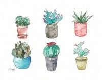 Six Cacti Fine Art Print