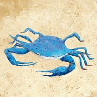 Blue Crab V Neutral Crop Fine Art Print