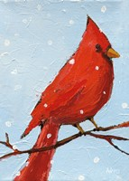 Cardinal I Fine Art Print