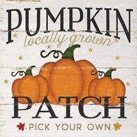 Pumpkin Patch Fine Art Print