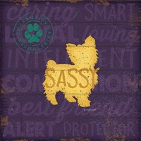 Sassy Dog Framed Print